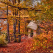 Autumn landscape - Cabin in the woods — Stock Photo #30848011