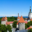 Tallinn panorama — Stock Photo
