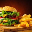 Traditional hamburger and french fries — Stock Photo