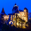 Brcastle in transylvania, romania — Stock Photo #34842157