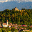Cisnadioarvillage in transylvania, romania — Stock Photo #34842385