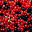 Berry background — Stock Photo