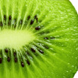 Kiwi isolated — Stock Photo