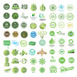 Set of eco friendly, natural and organic labels. — Stok Vektör