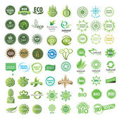 Set of eco friendly, natural and organic labels. — Stock Vector