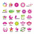 Collection of vector multicolored floral logos — Stock Vector
