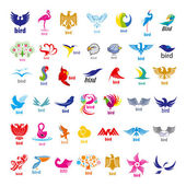 Biggest collection of vector logos birds — Stock Vector