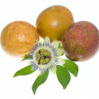 Passionflower on a maracuya - Stock Photo