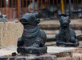 Ancient sculpture of the Indian cow, Brihadishvara Temple, Tanjavur — Stock Photo