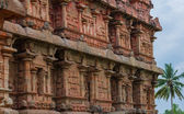 Ancient Temple, bas-reliefs at the Gangaikonda Cholapuram, South India — Стоковое фото