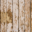 Antique wooden door — Stock Photo #24554849
