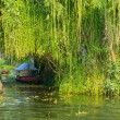 Stock Photo: Landscape with boat in keralbackwaters, India