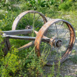 Old rusty iron wheel spokes, side by chariot — Stock Photo