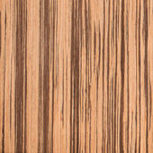 Texture of zebrano, wood grain — Stock Photo