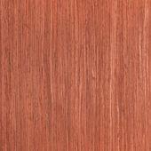 Texture of cherry, wood veneer — Stock Photo