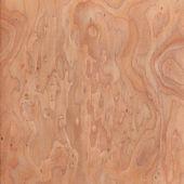 Texture of root, wood texture beautiful — Foto de Stock