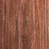 Texture wenge tree, wood veneer — Stock Photo