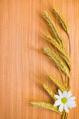Ear wheat with chamomile on wooden background — Stock Photo