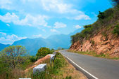 Beautiful landscape of road in India, Kerala — Stock Photo