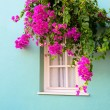The window framed with fresh flowers — Stock Photo