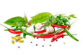 Still life with Herbs and Spices over white background, isolated — Stock Photo