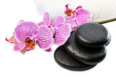 Spa still life with orchid,  black stones with drops — Stock Photo