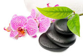 Spa still life with stripped orchid,  black stones with drops, g — Stock Photo