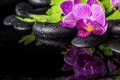 Beautiful spa setting of stripped lilac orchid (phalaenopsis), b — Stock Photo