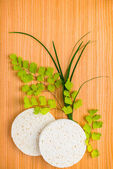 Spa set of sponge with green branches fern on wooden background — Stok fotoğraf