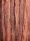 Walnut, wood grain, natural rural tree background — Stock Photo