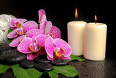 Spa setting of blooming twig violet orchid (phalaenopsis) on zen — Stock Photo
