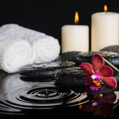 Spa concept of zen stones with drops, purple orchid (phalaenopsi — Stock Photo