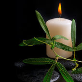 Beautiful spa setting of green tendril passionflower, candles an — Stock Photo