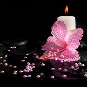 ピンクのハイビスカス、ろうそくの美しいスパのコンセプトは禅石ウィット — ストック写真