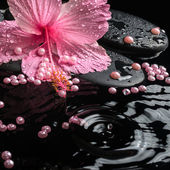 Beautiful spa setting of delicate pink hibiscus, zen stones with — Stock Photo