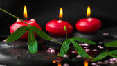 Spa concept of passiflora branch, pearl beads and red candles on — Stock Photo
