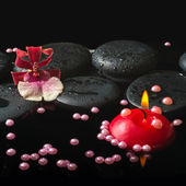 Spa setting of orchid cambria flower and pearl beads, zen stones — Stock Photo