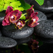 Spa setting of zen stones with drops and blooming twig of dark s — Stock Photo #50512367