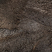 Sheep fur texture, Mouton (manufactured sheepskin) background — Stock Photo