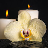 Beautiful spa set of yellow orchid (phalaenopsis), candles on ze — Stock Photo