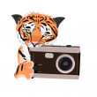 Illustration tigers who gnaws fotoaparat. — Stock Photo