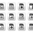 File type black icons on modern grey buttons set - Stock Vector