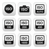 ISO - camera film speed standard buttons set — Stock Vector