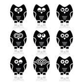 Owl cartoon character vector icons set — Stock Vector