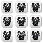 Owl cartoon character vector buttons set — Stock Vector #43372785