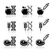Food DNA, genetically modyfied food GMO icons set — Stock Vector