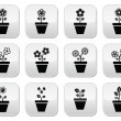 Flower, plant in pot vector icons set — Stock Vector
