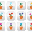 Flower, plant in pot vector colorful icons set — Stock Vector #48839035