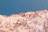 Stein und wasser-welle-hintergrund — Stockfoto
