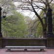 Stock Photo: Old lamp posts in Central Park, New York